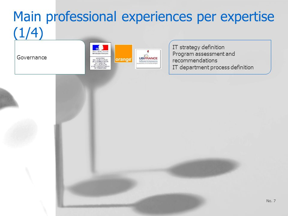 Main professional experiences per expertise (1/4) No.