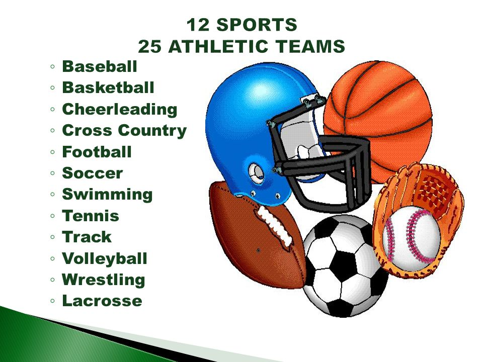 Baseball Basketball Cheerleading Cross Country Football Soccer Swimming Tennis Track Volleyball Wrestling Lacrosse