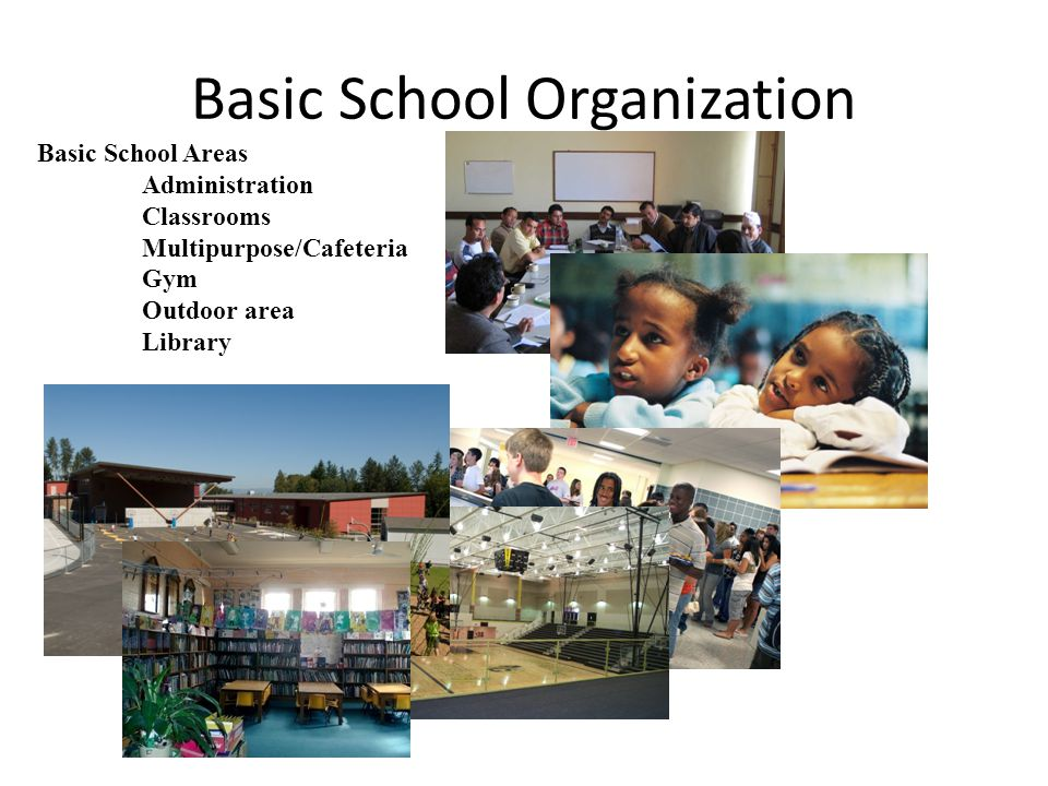 Basic School Organization Basic School Areas Administration Classrooms Multipurpose/Cafeteria Gym Outdoor area Library