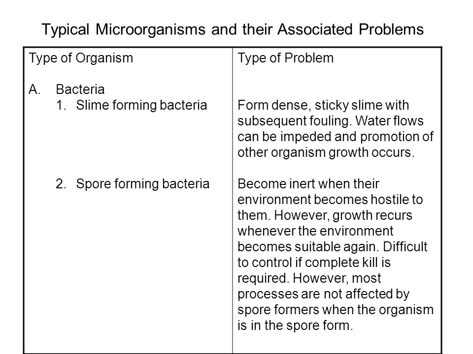 Typical Microorganisms and their Associated Problems Type of Organism A.Bacteria 1.Slime forming bacteria 2.Spore forming bacteria Type of Problem Form dense, sticky slime with subsequent fouling.