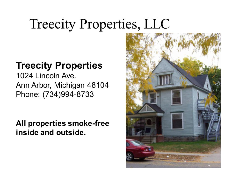 Treecity Properties, LLC Treecity Properties 1024 Lincoln Ave.