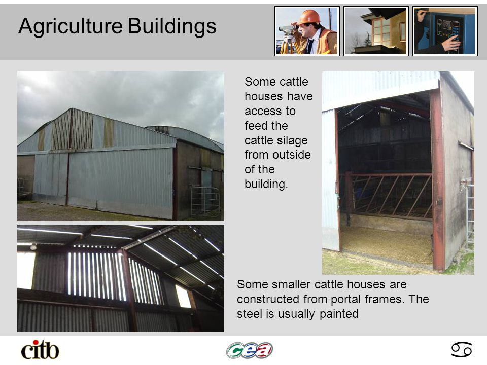abcdabcd Agriculture Buildings Some smaller cattle houses are constructed from portal frames.