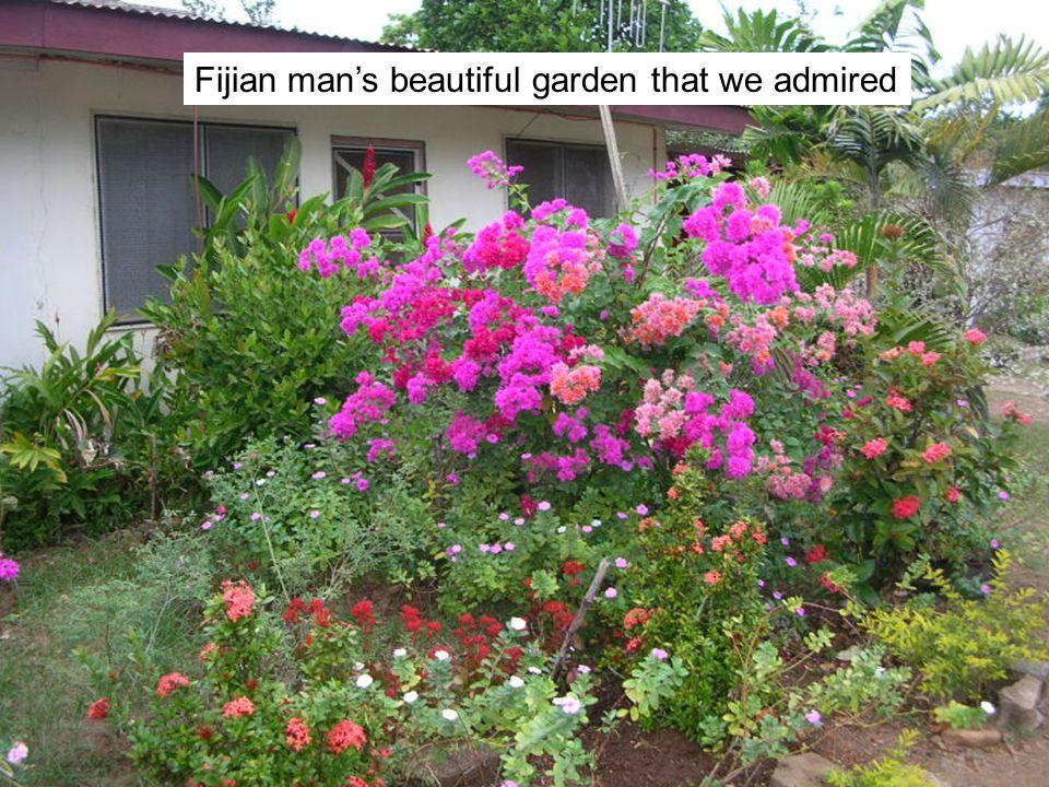 Fijian mans beautiful garden that we admired