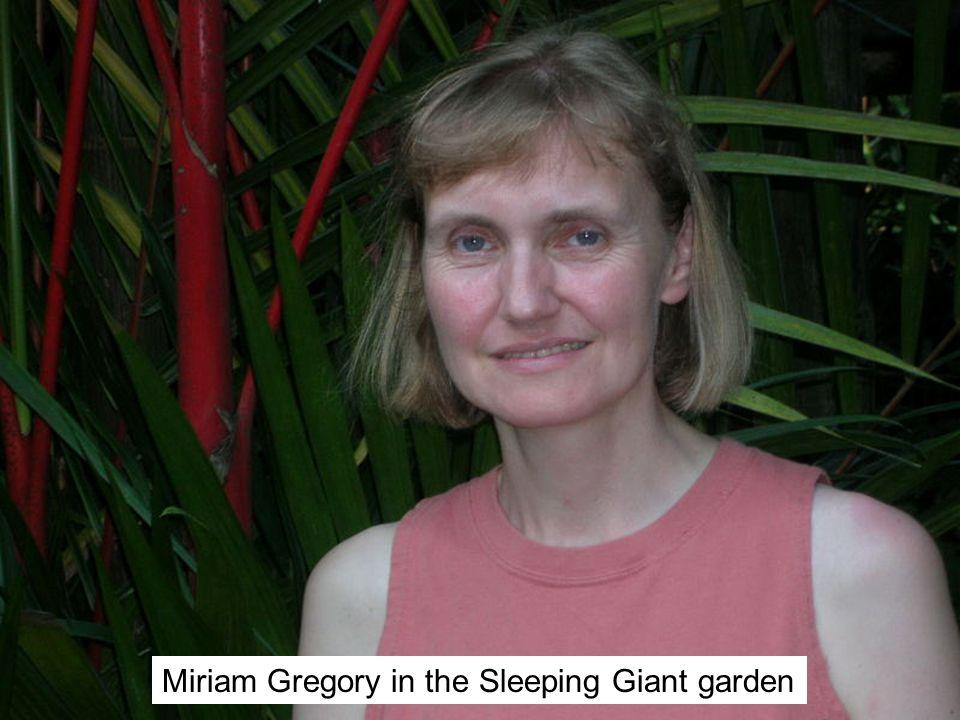 Miriam Gregory in the Sleeping Giant garden