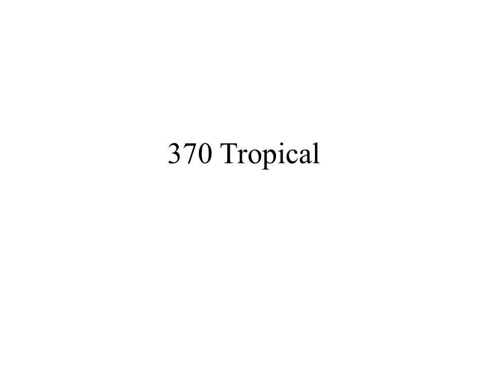 370 Tropical