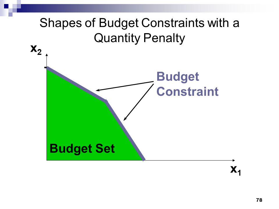 78 Shapes of Budget Constraints with a Quantity Penalty x2x2 x1x1 Budget Set Budget Constraint