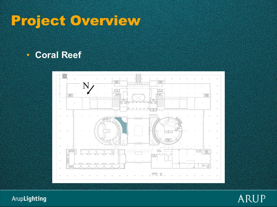 Objectives Maximize direct sun on the coral reef.