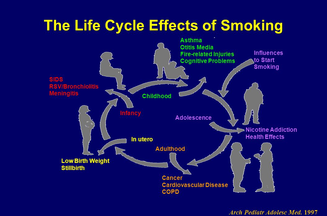 The Life Cycle Effects of Smoking SIDS RSV/Bronchiolitis Meningitis Infancy Low Birth Weight Stillbirth In utero Asthma Otitis Media Fire-related Inju