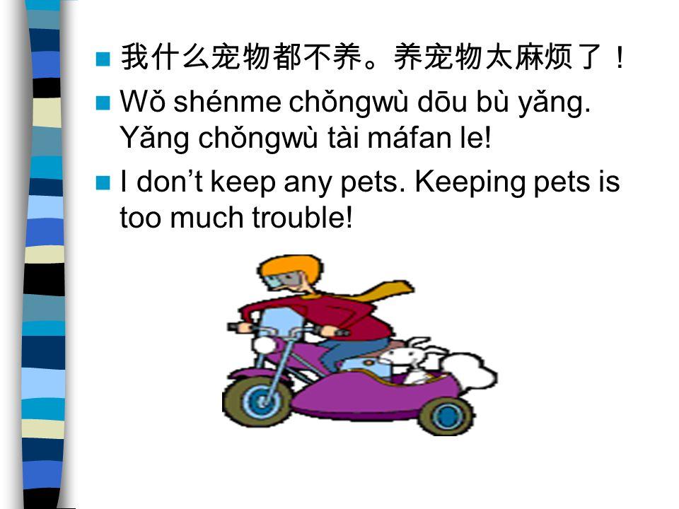 Wǒ shénme chǒngwù dōu bù yǎng. Yǎng chǒngwù tài máfan le! I dont keep any pets. Keeping pets is too much trouble!