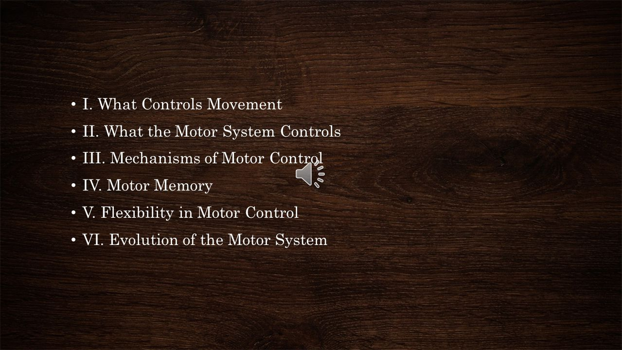 Motor control The brain plays a major role in our body motoricity. Motor controls are the information processing activities carry out by our central n