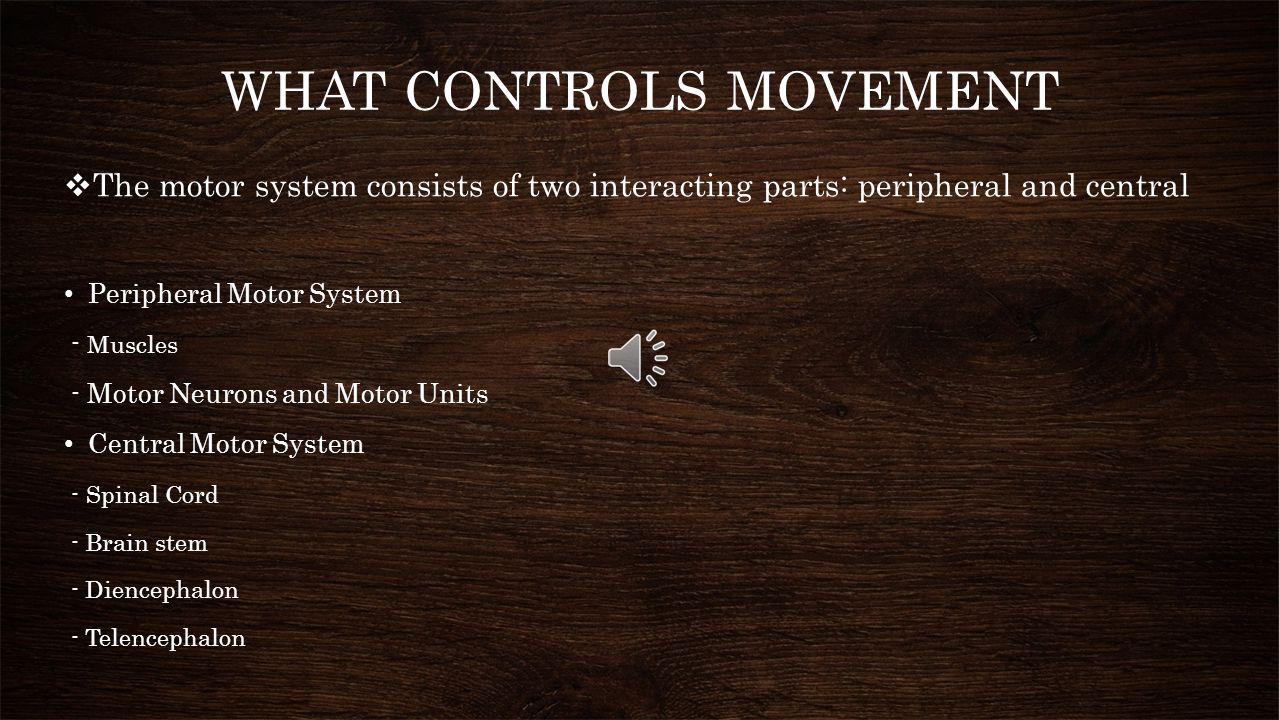 I. What Controls Movement II. What the Motor System Controls III. Mechanisms of Motor Control IV. Motor Memory V. Flexibility in Motor Control VI. Evo