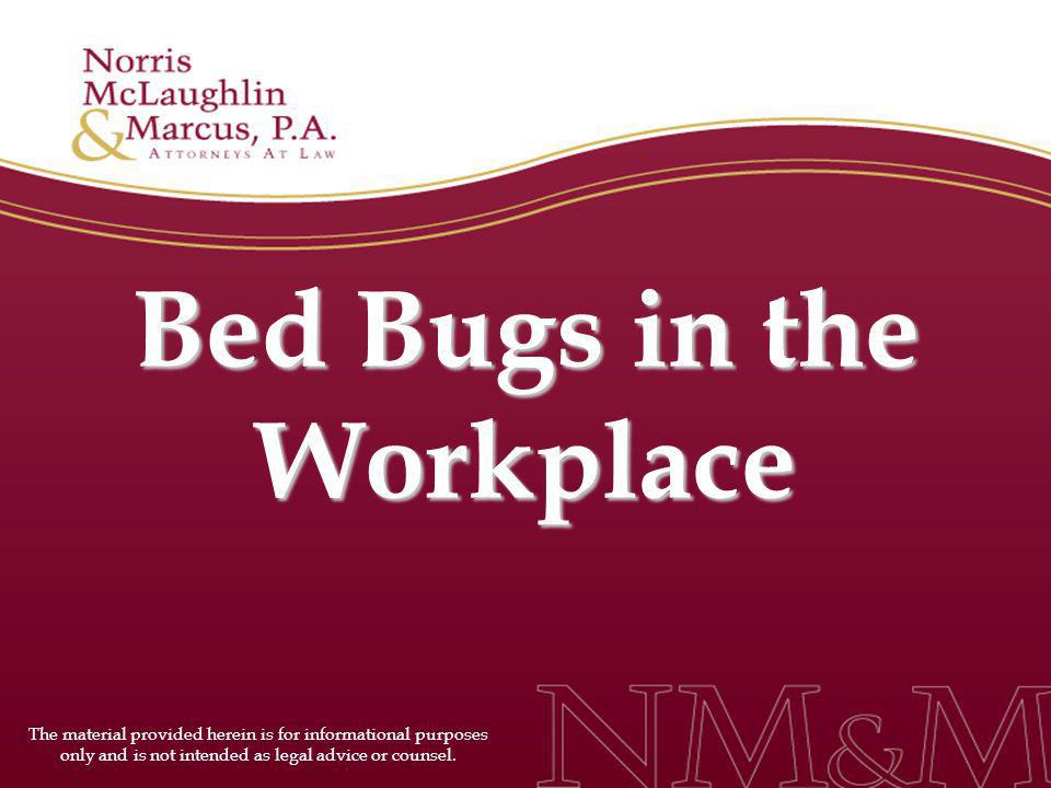 Bed Bugs in the Workplace The material provided herein is for informational purposes only and is not intended as legal advice or counsel.