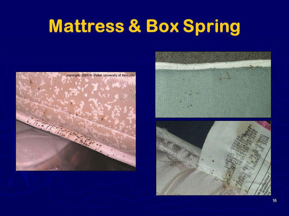 16 Mattress & Box Spring