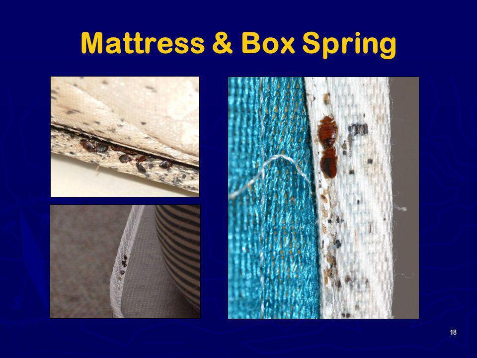 18 Mattress & Box Spring