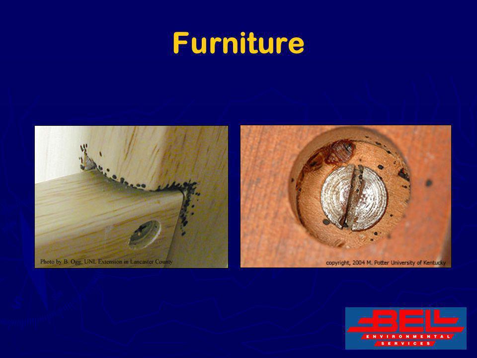 19 Furniture