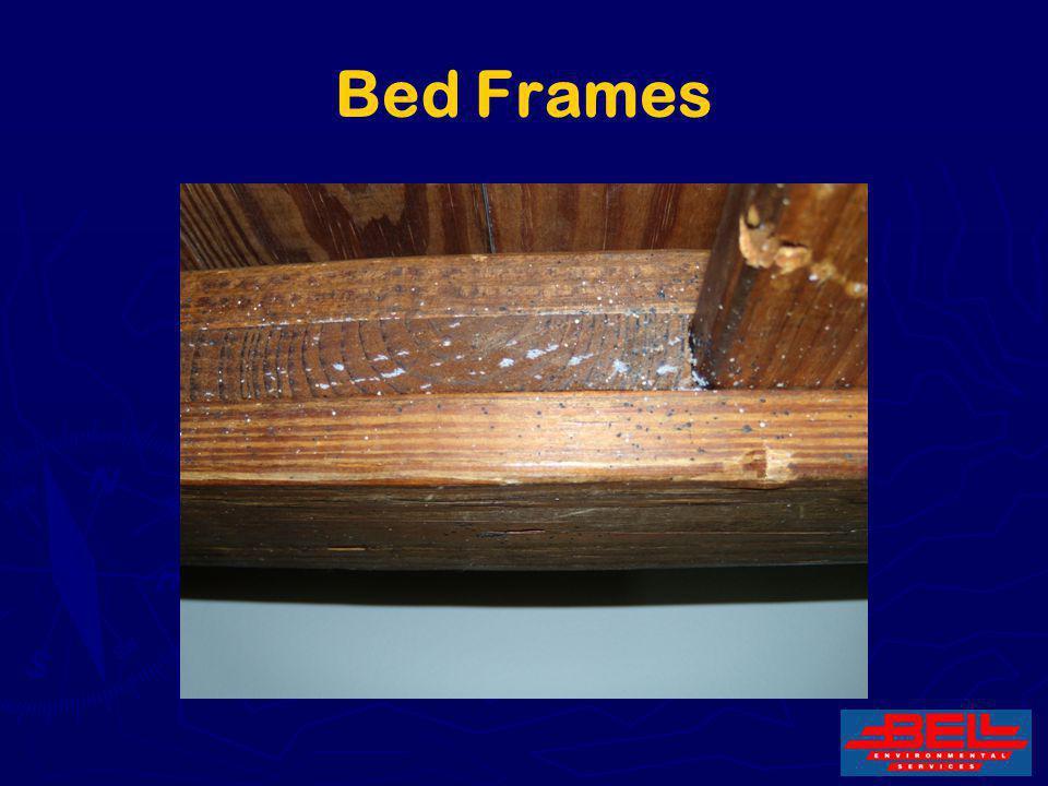 24 Bed Frames