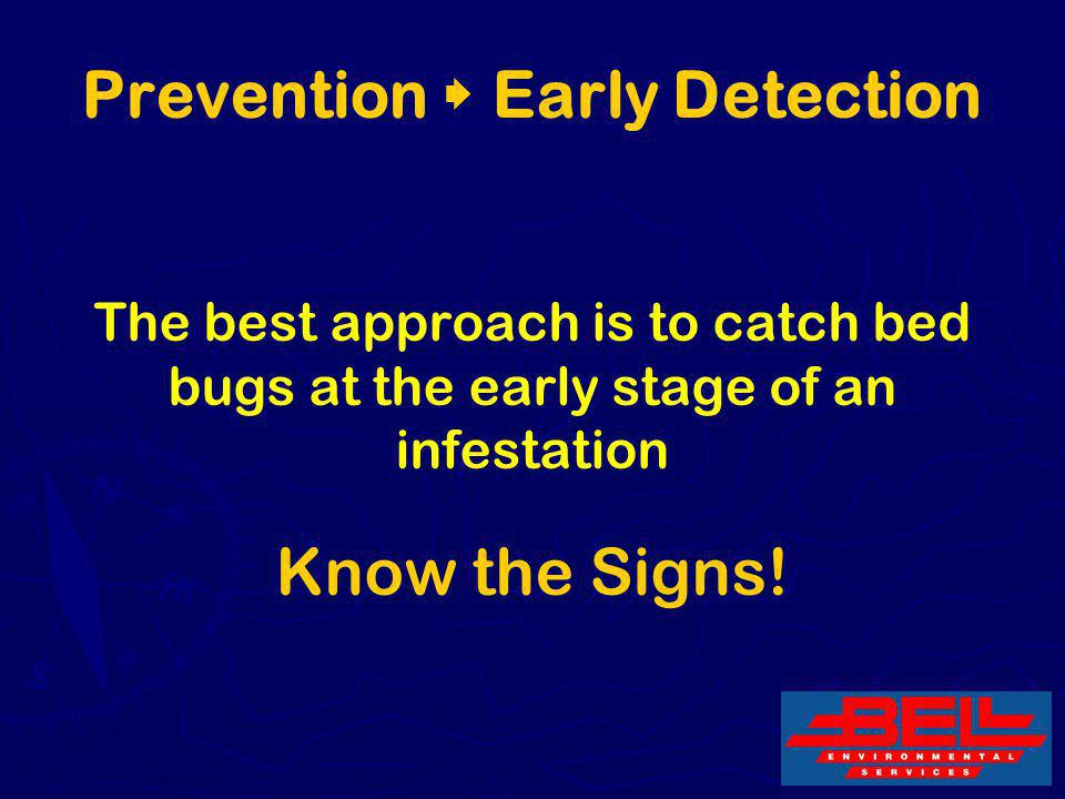 27 Prevention Early Detection The best approach is to catch bed bugs at the early stage of an infestation Know the Signs!