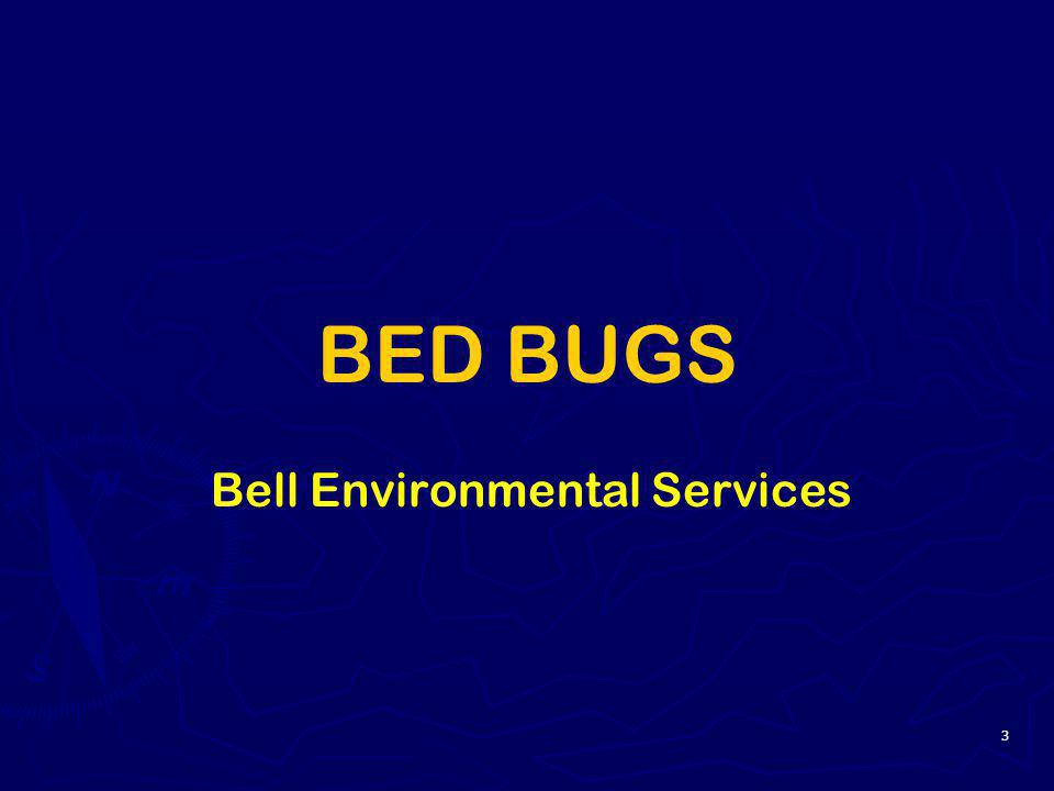 3 BED BUGS Bell Environmental Services
