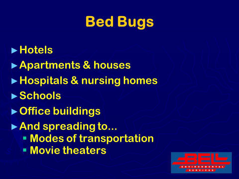 6 Bed Bugs Hotels Apartments & houses Hospitals & nursing homes Schools Office buildings And spreading to... Modes of transportation Movie theaters