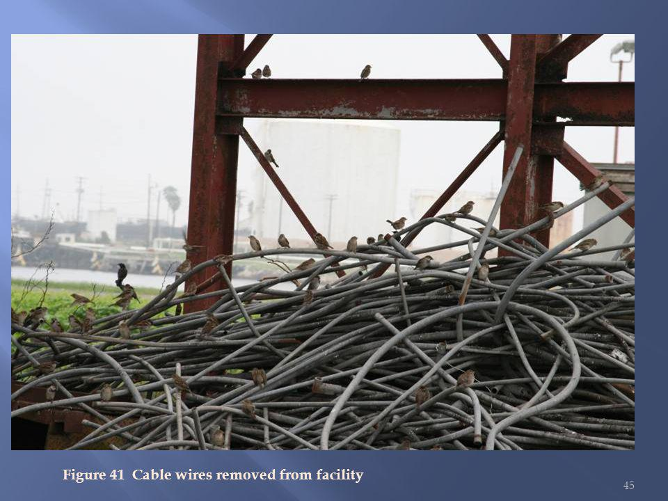 45 Figure 41 Cable wires removed from facility