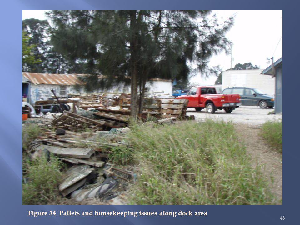 48 Figure 34 Pallets and housekeeping issues along dock area