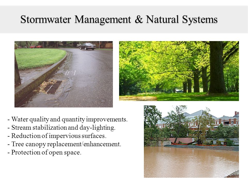 Stormwater Management & Natural Systems - Water quality and quantity improvements. - Stream stabilization and day-lighting. - Reduction of impervious