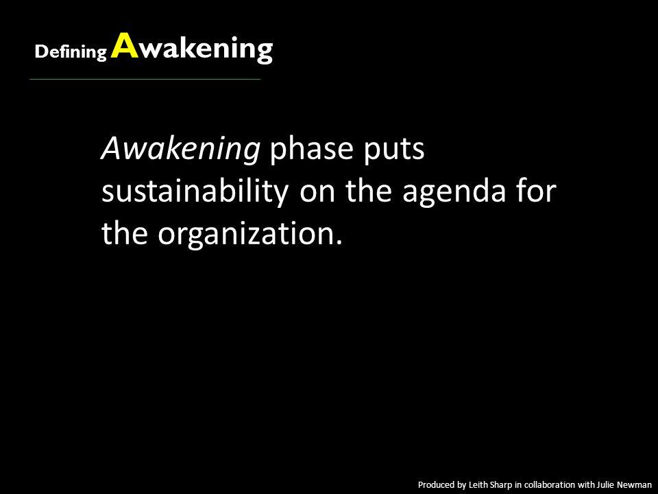Defining A wakening Awakening phase puts sustainability on the agenda for the organization.