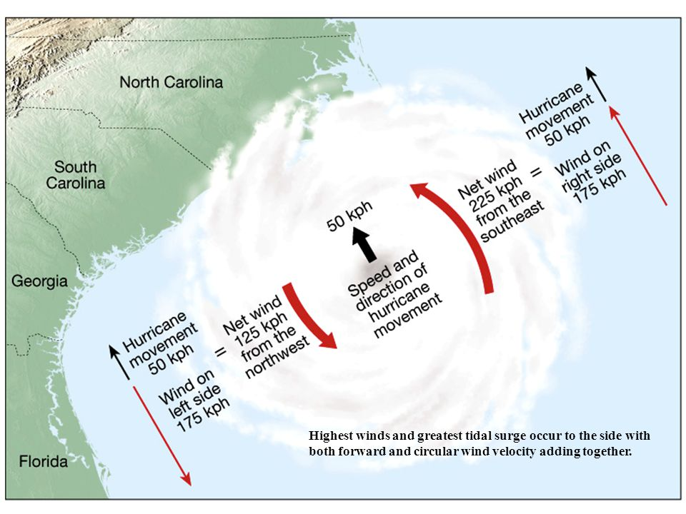 Highest winds and greatest tidal surge occur to the side with both forward and circular wind velocity adding together.