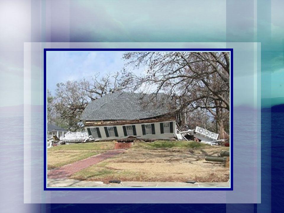 Post-Katrina Housing (Contd)