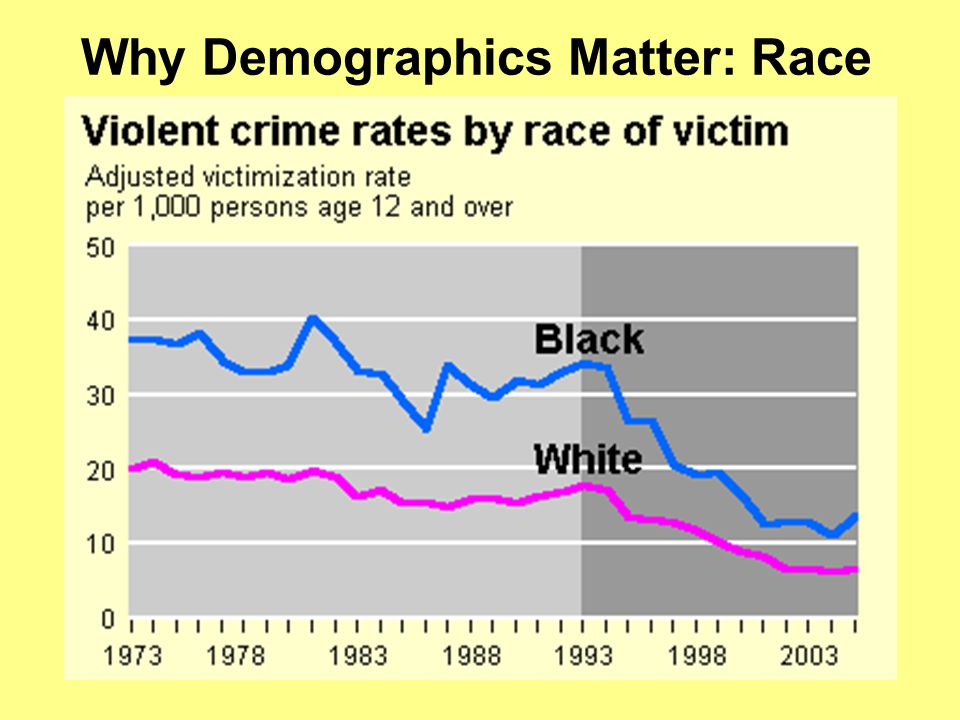 Why Demographics Matter: Race
