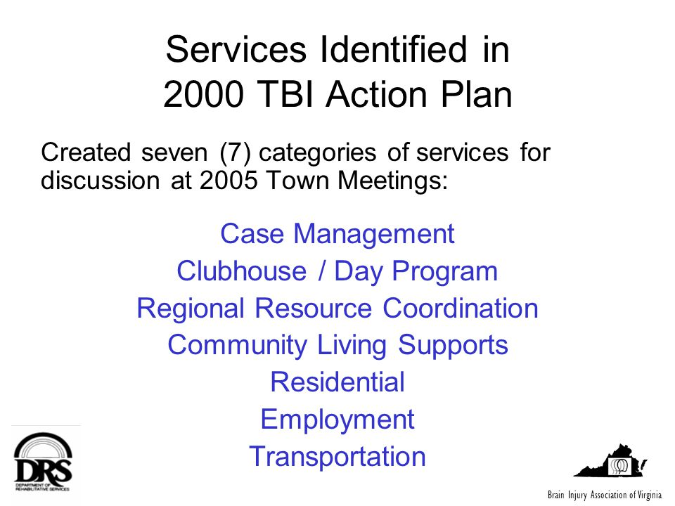 Services Identified in 2000 TBI Action Plan Created seven (7) categories of services for discussion at 2005 Town Meetings: Case Management Clubhouse /
