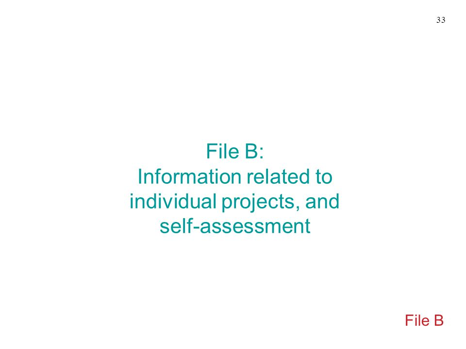 File B: Information related to individual projects, and self-assessment File B 33