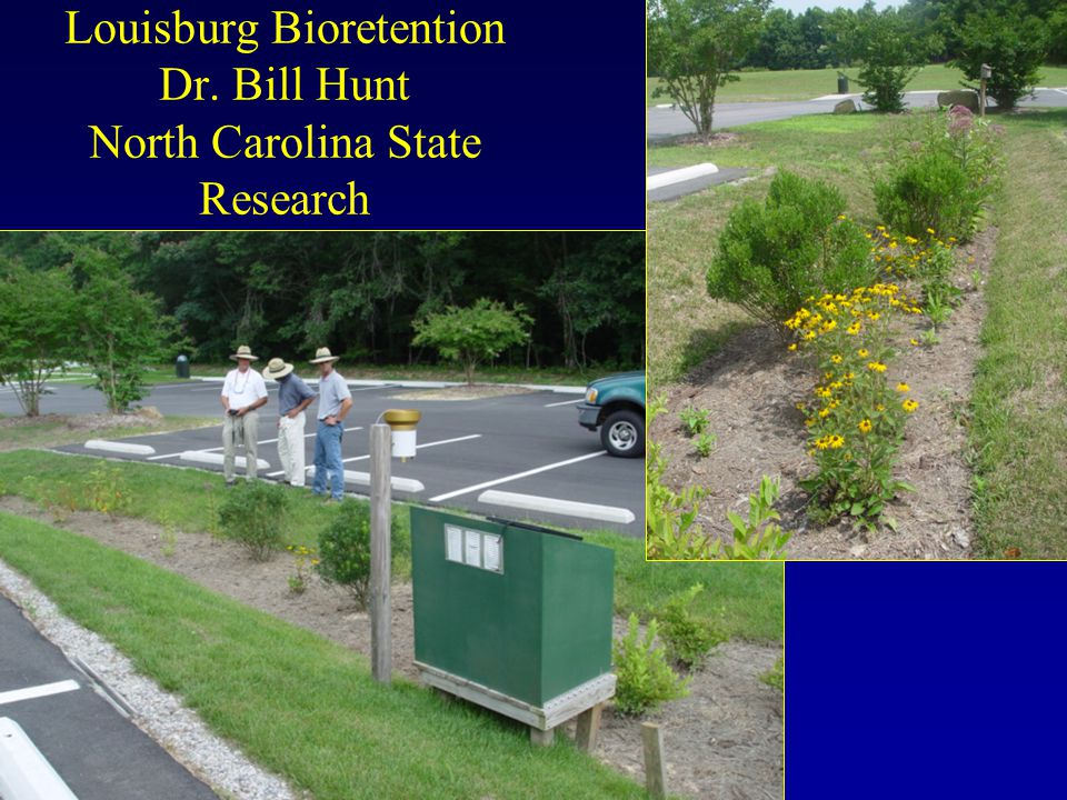 Louisburg Bioretention Dr. Bill Hunt North Carolina State Research