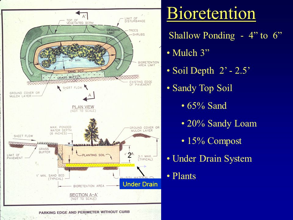 Bioretention Shallow Ponding - 4 to 6 Mulch 3 Soil Depth 2 - 2.5 Sandy Top Soil 65% Sand 20% Sandy Loam 15% Compost Under Drain System Plants X 2 Under Drain