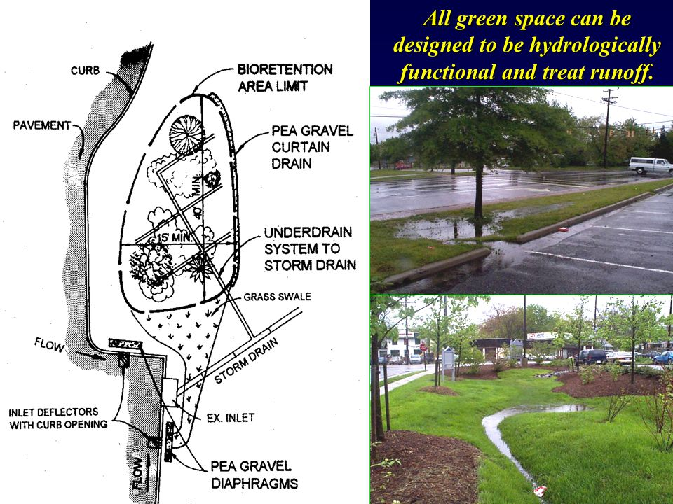 All green space can be designed to be hydrologically functional and treat runoff.