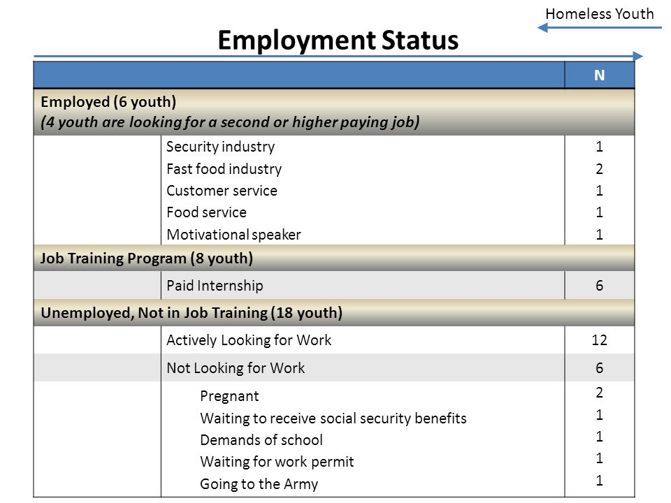 Homeless Youth Employment Status N Employed (6 youth) (4 youth are looking for a second or higher paying job) Security industry Fast food industry Cus