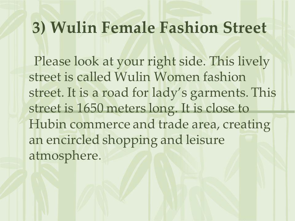 3) Wulin Female Fashion Street Please look at your right side. This lively street is called Wulin Women fashion street. It is a road for ladys garment
