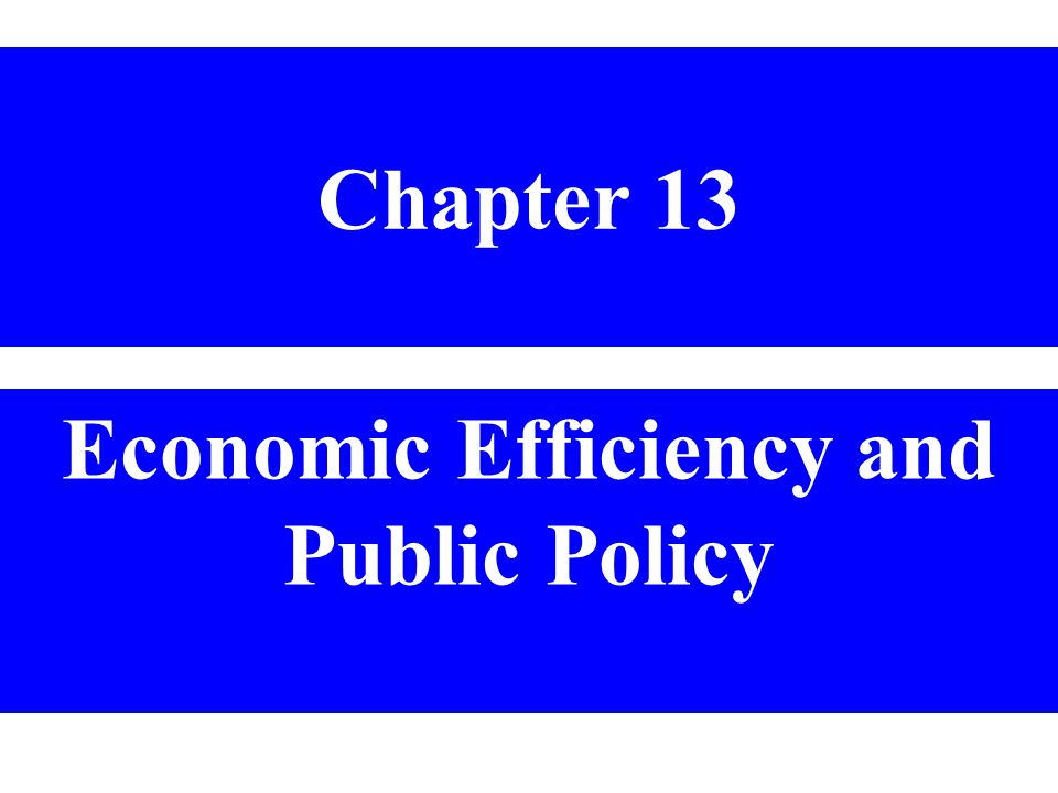 Chapter 13 Economic Efficiency and Public Policy