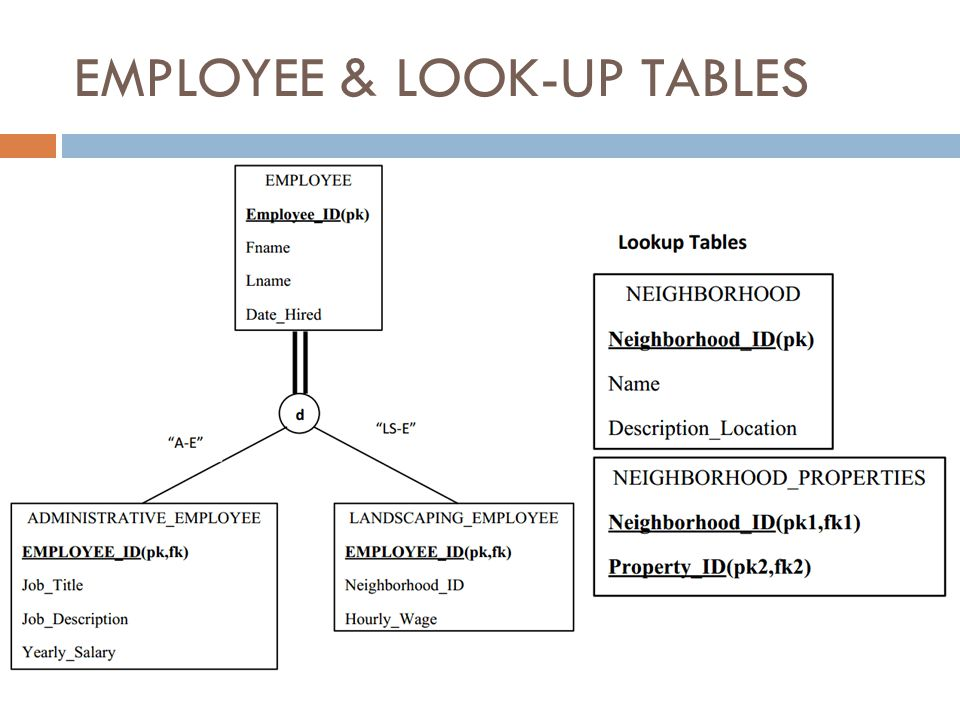 EMPLOYEE & LOOK-UP TABLES