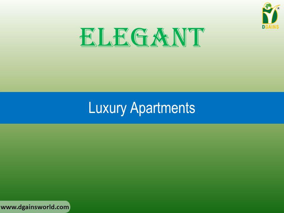 Luxury Apartments Elegant www.dgainsworld.com