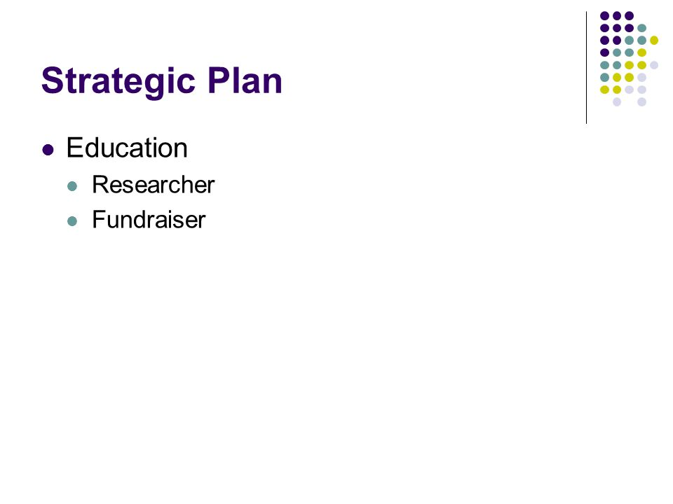 Strategic Plan Education Researcher Fundraiser