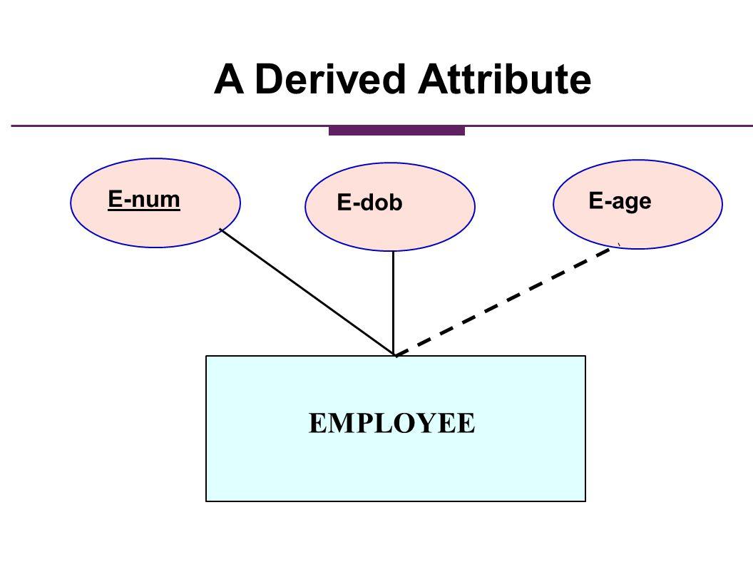 EMPLOYEE E-num E-dob E-age A Derived Attribute
