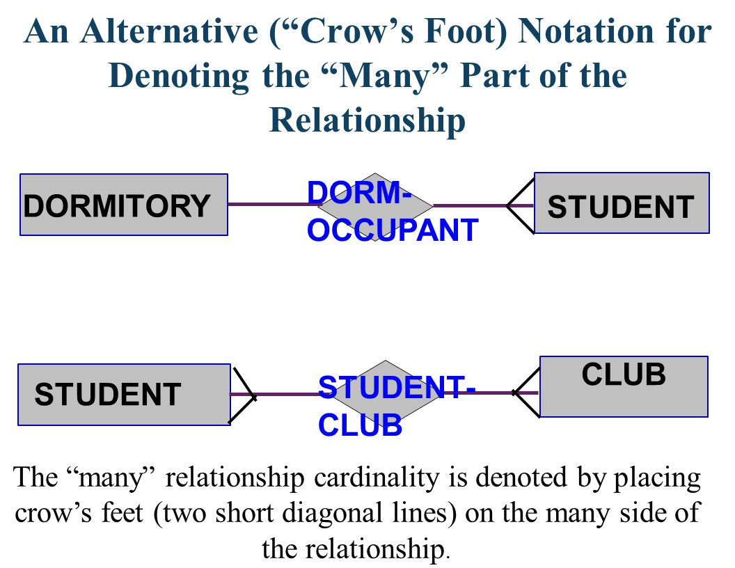An Alternative (Crows Foot) Notation for Denoting the Many Part of the Relationship CLUB DORMITORY STUDENT DORM- OCCUPANT STUDENT- CLUB STUDENT The ma