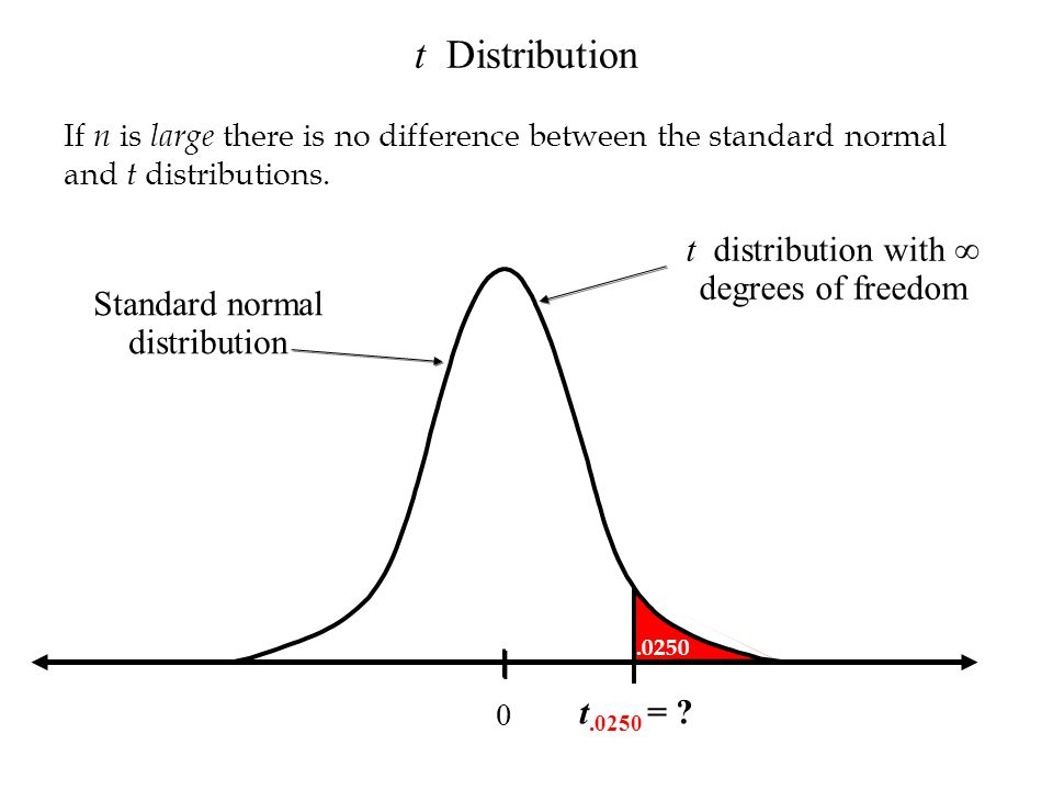 0 t.0250 = ? t Distribution If n is large there is no difference between the standard normal and t distributions. t distribution with degrees of freed
