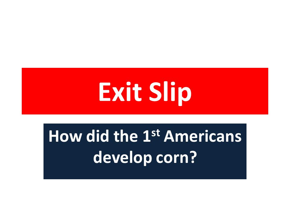 Exit Slip How did the 1 st Americans develop corn?
