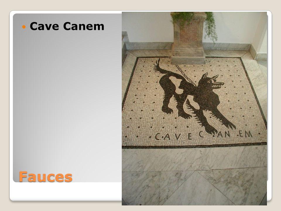 Fauces Cave Canem