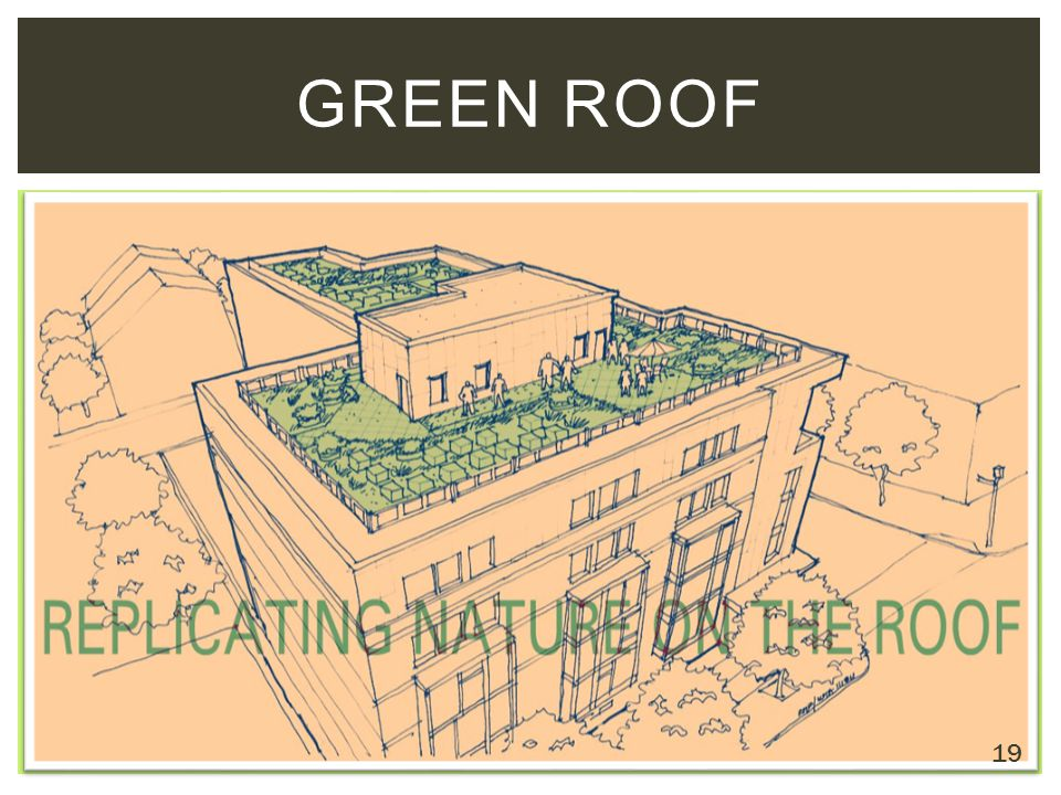 GREEN ROOF 19