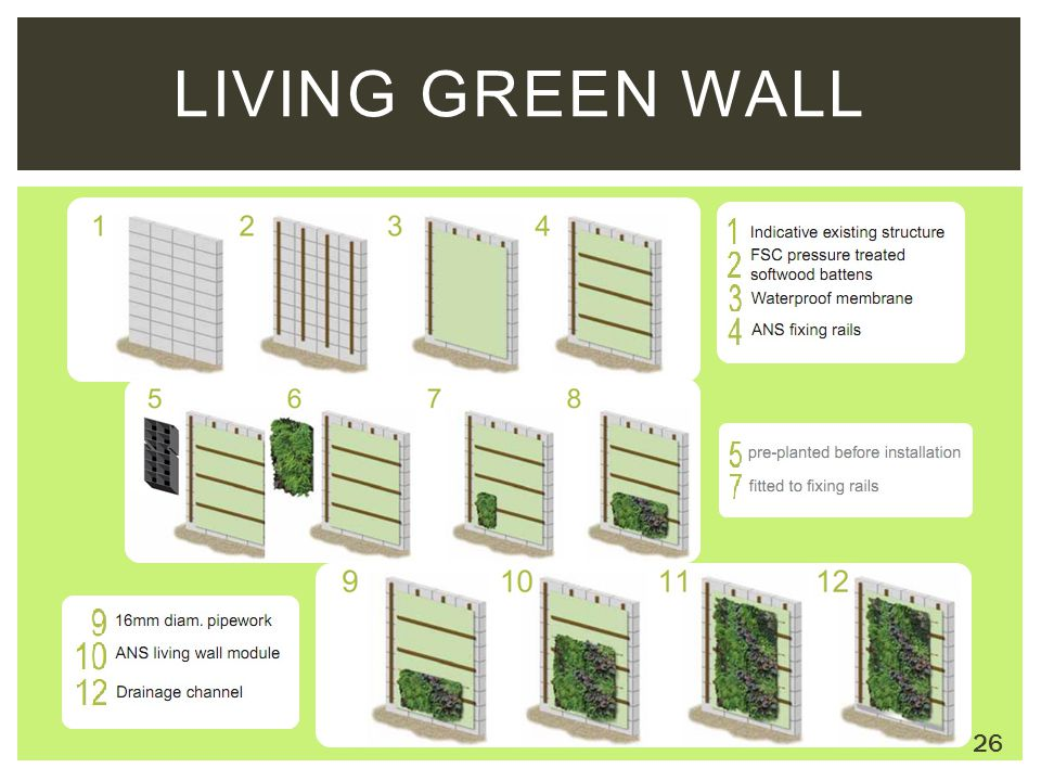 LIVING GREEN WALL 26