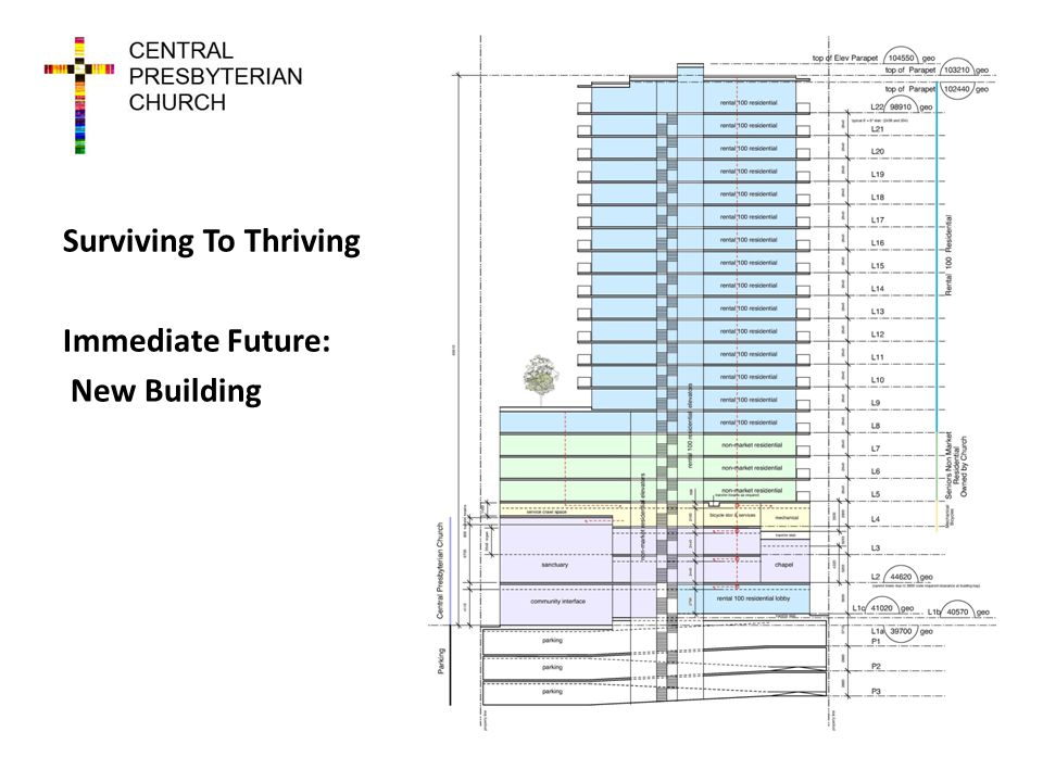 Surviving To Thriving Immediate Future: New Building