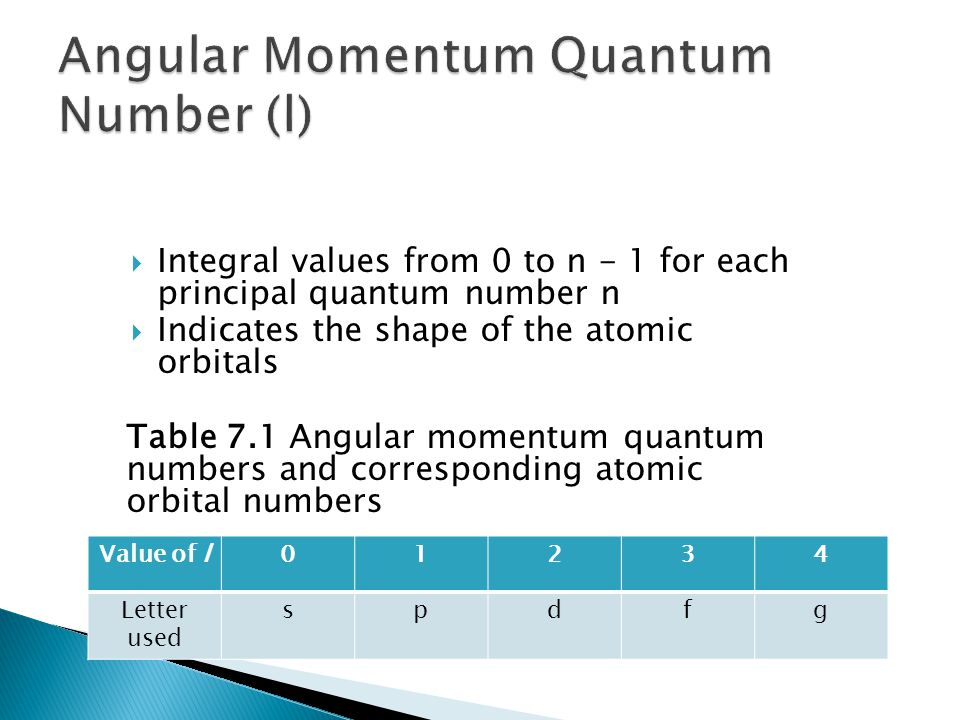 Integral values from 0 to n - 1 for each principal quantum number n Indicates the shape of the atomic orbitals Table 7.1 Angular momentum quantum numb